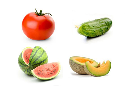 oguretc_pomidor