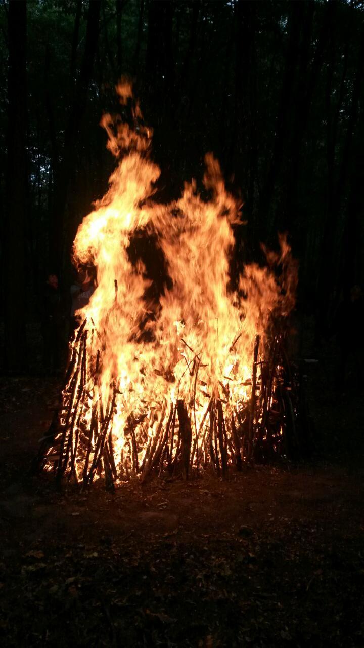 Огонь (2)