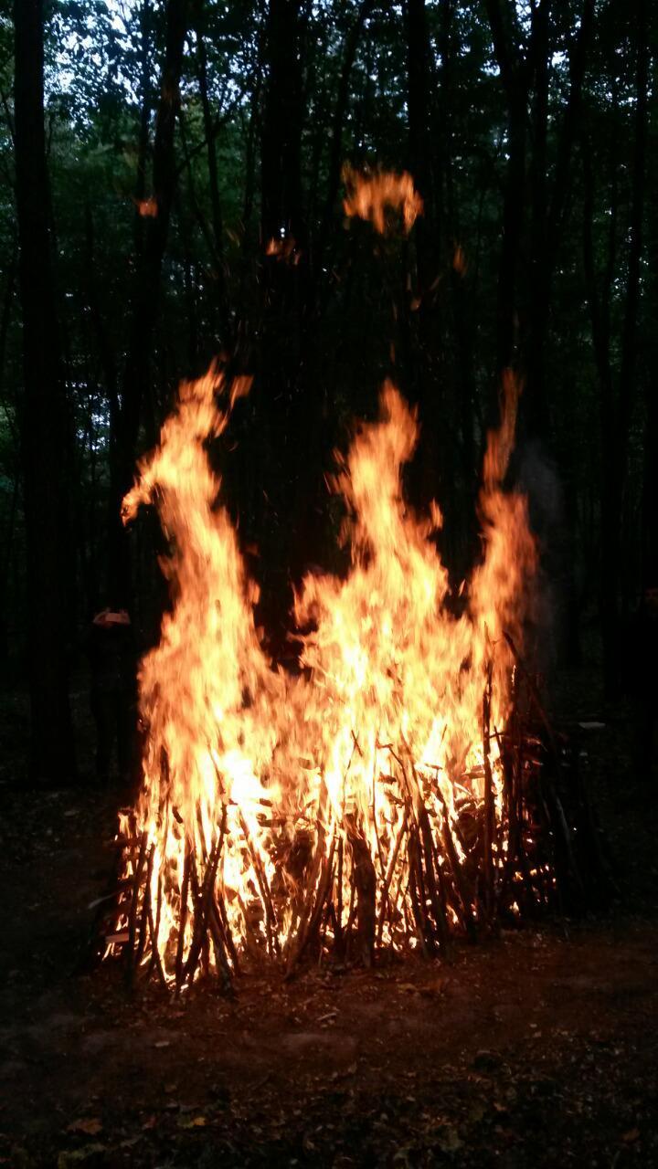 Огонь (5)