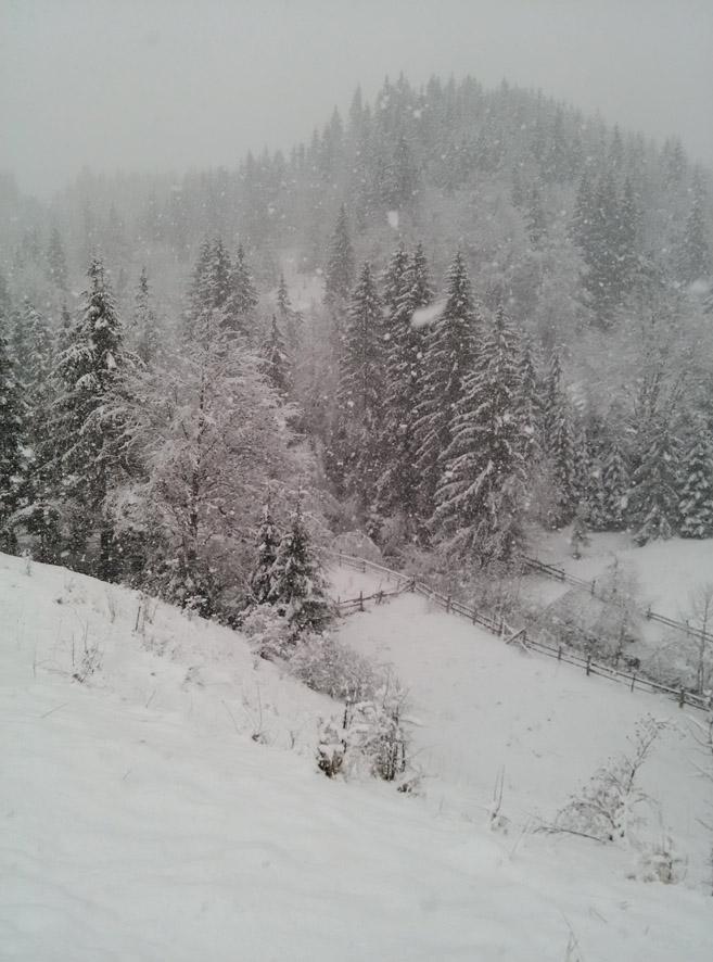 Снег идет ... Карпаты
